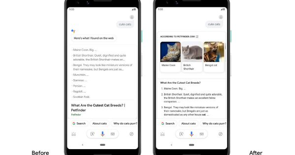 Google Assistant Query Results Now Come in the Form of