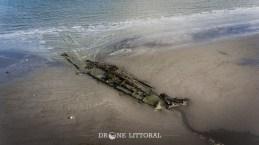 Drone Littoral - Crested Eagle
