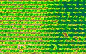 gndvi-e1517523092143 Mappe multispettrali