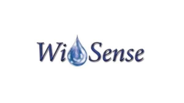wisense-600x337 Sistemi Supporto Decisioni