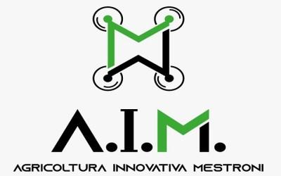 aim-400x250 Partner
