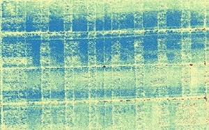 indice-clorofilla Mappe multispettrali