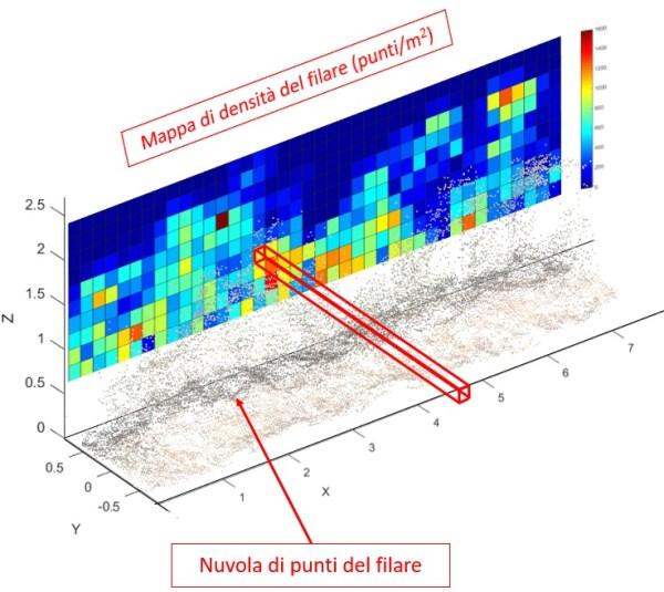 densità-chioma-vigneto-600x535 Algoritmi