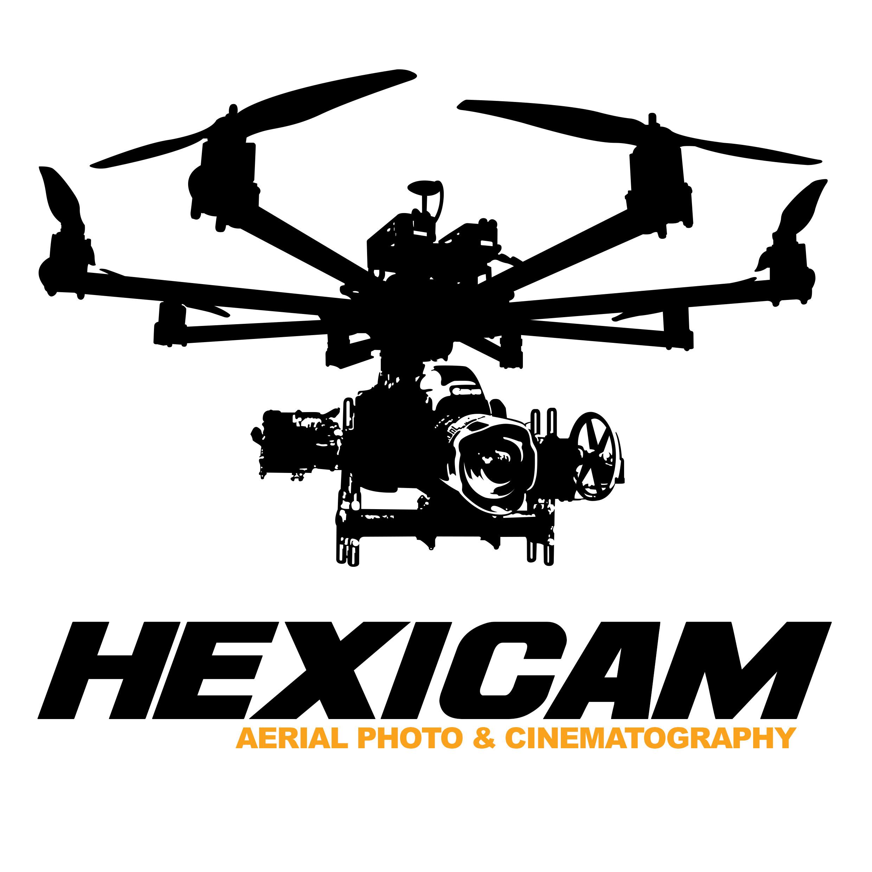 Logo Drone Pilot