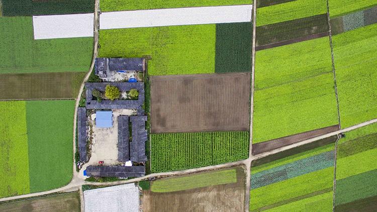 vegetation-mapping-webinar