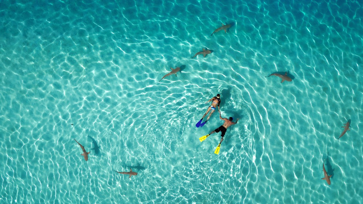 1st Prize - Category Nature - French Polynesia by Tahitiflyshoot