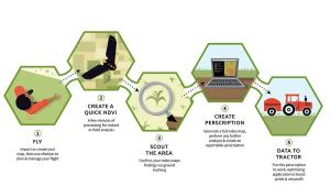 Drone Agriculture Services