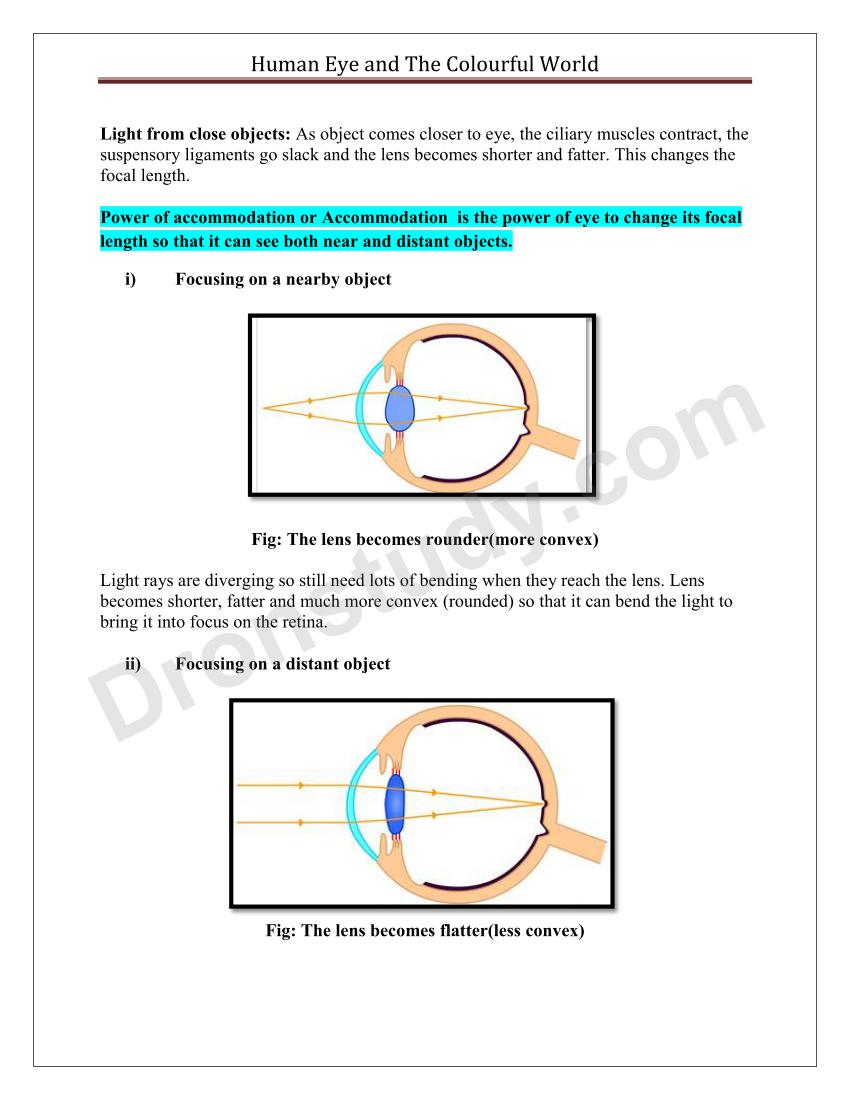 Human Eye and The Colourful World : Chapter Notes - DronStudy com