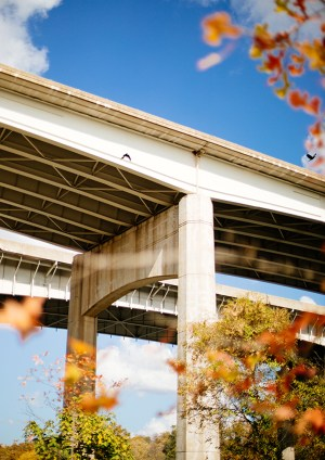photography print of a bridge on a sunny autumnal day
