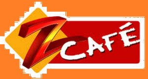 Upcoming TV Shows on Zee Cafe in Feburary on Valentine Day | in the month of may