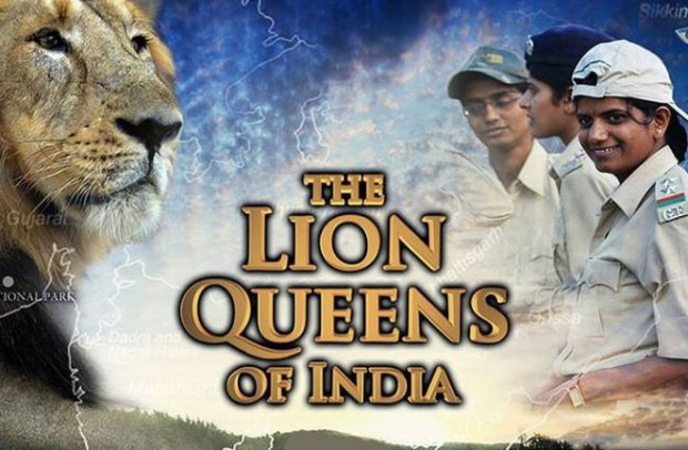 The Lion Queens of India | Discovery Channel