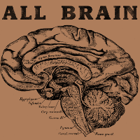 If you are ALL BRAIN then brawn doesn't matter