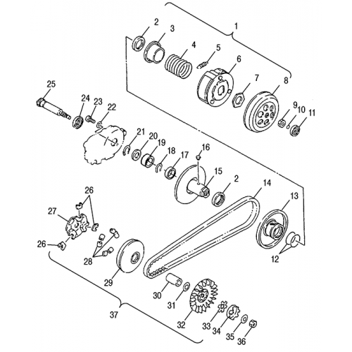 Drive Pulley