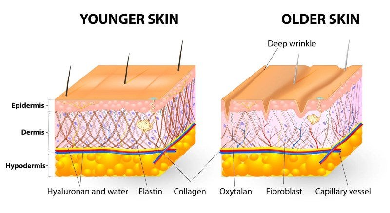 Ageing skin, extrinsic factors