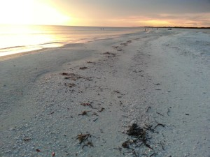 Footsteps in the Sand on Marco Island