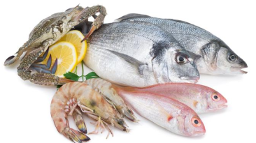 health fish food diet