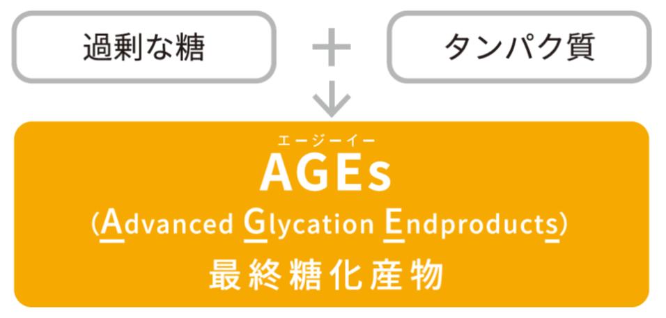 過剰な糖 + タンパク質 → AGEs(最終糖化産物)