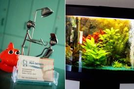 Kinderblick ins Aquarium