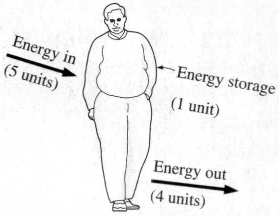 Why The Energy Balance Equation Results In Flawed