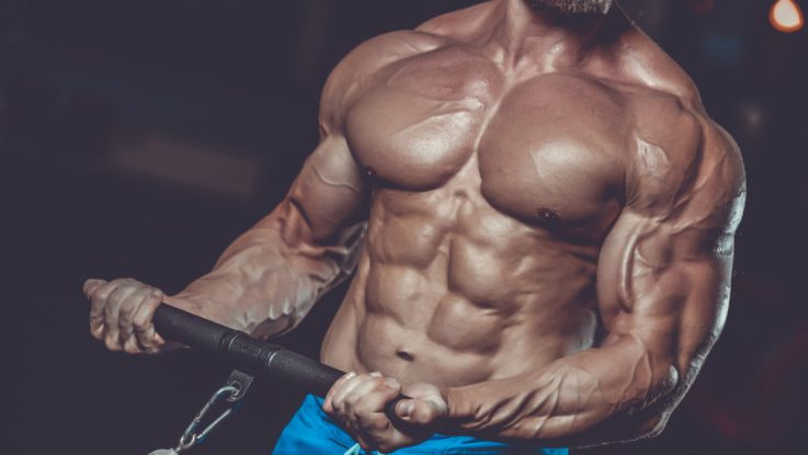 The-College-Culture-of-Anabolic-Steroids-and-Performance