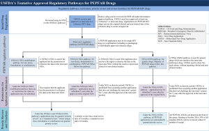 Figure 2 USFDA's tentative approval regulatory pathways for drugs used by PEPFAR
