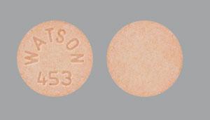WATSON 453 Pill Images (Orange / Round)