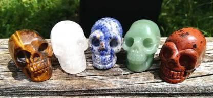 Skull Familie