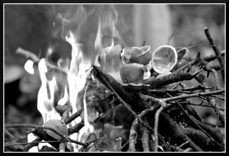 Fêtes du Panthéon de la Vie : feu de la vie, feu de Belenos