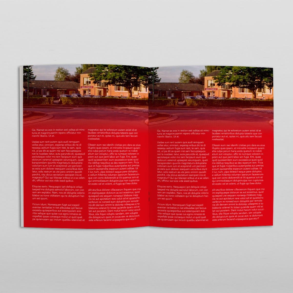 Voorbeeld brochure van Druk-store
