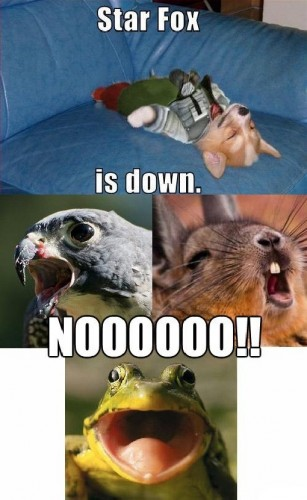 star fox is down 307x500 star fox is down