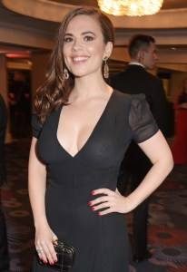 Hayley Atwell   See Through Dress.jpg