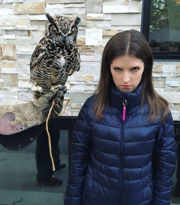 Anna Kendrick and an Owl