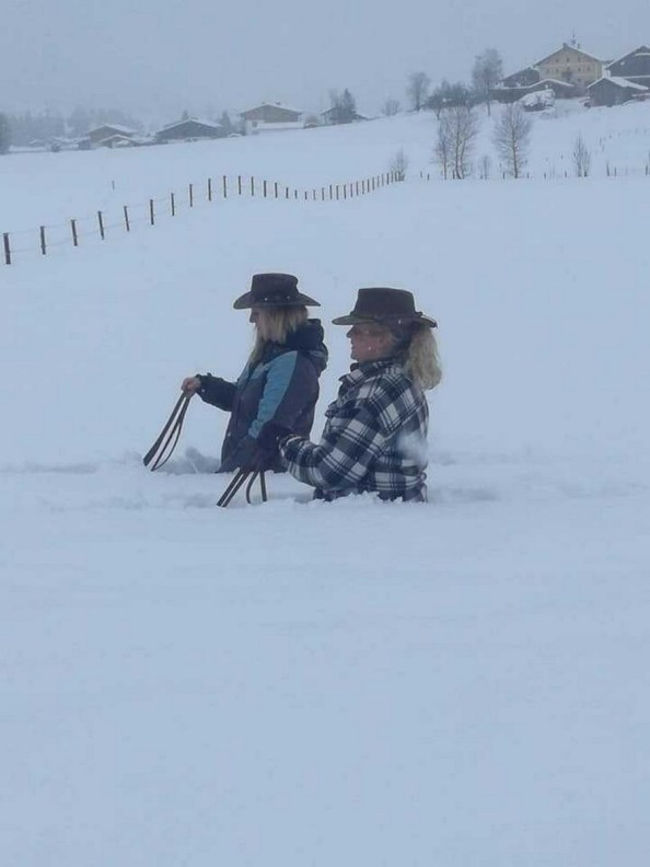 Snow Cow Girls