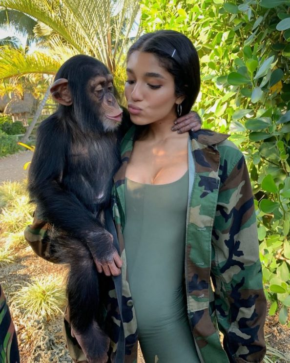 chimp and lady 819x1024 chimp and lady