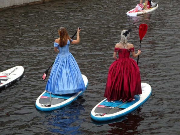 fancy paddle boards