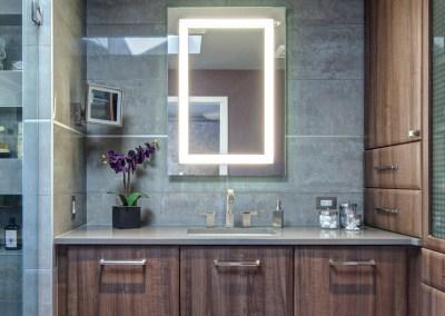 Contemporary Townhome Master Bath