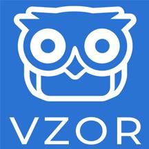 VZOR Brain Monitor.png