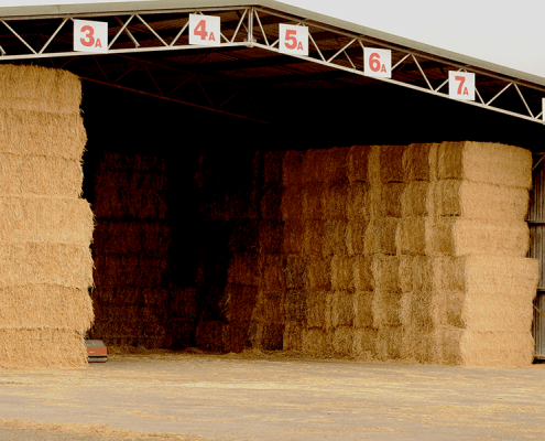 Stacked hay ready to be cut