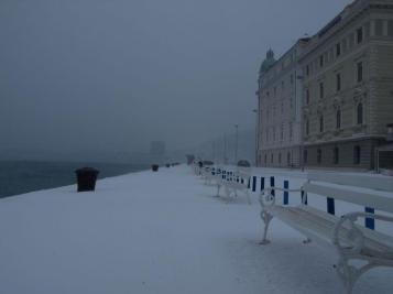 Split under the snow