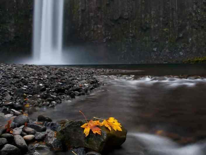 Abiqua Falls Early Autumn