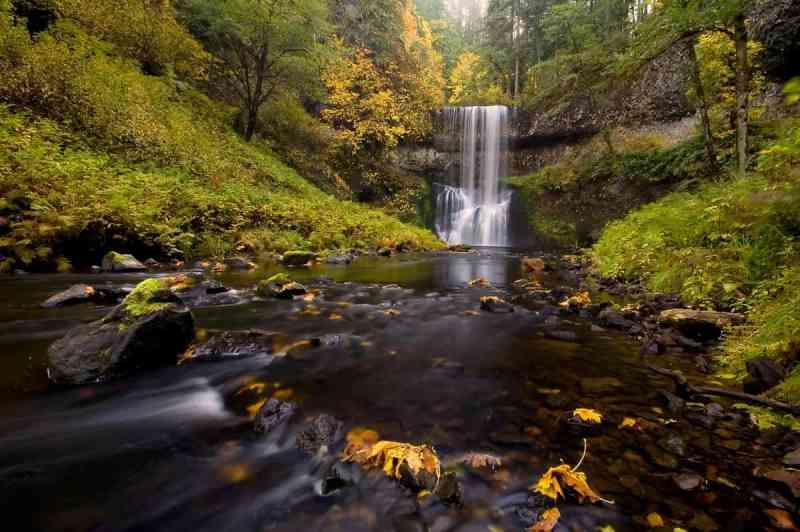 Autumn at Silver Falls