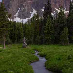 Canyon Creek Meadows