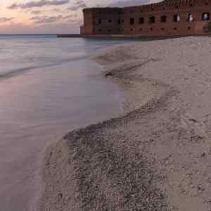 Coral Sand on Dry Tortugas