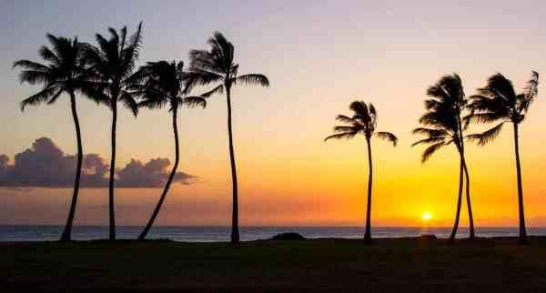 Golden Hawaiian Sky