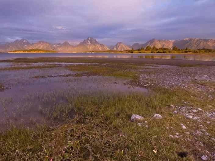 Jackson Lake Marshes