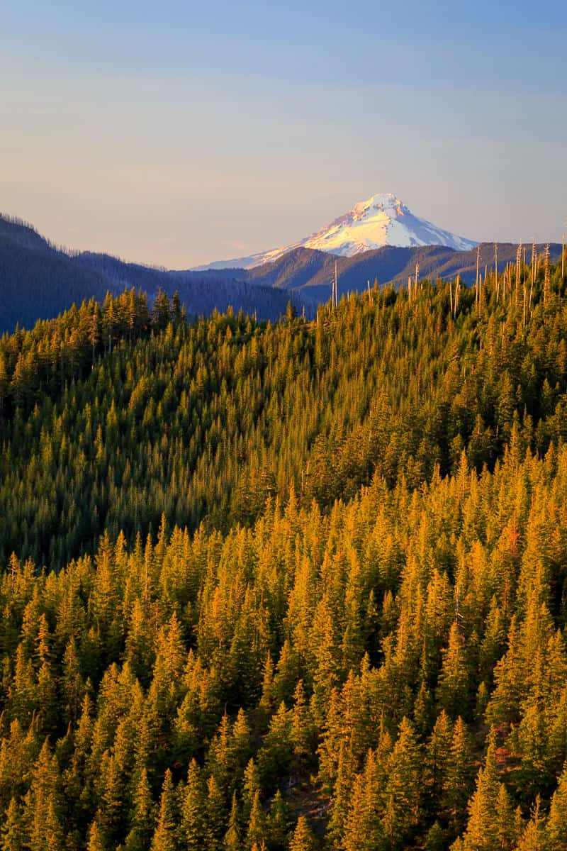 Mt Hood National Forest
