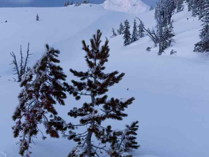 Mt Hood Slopes