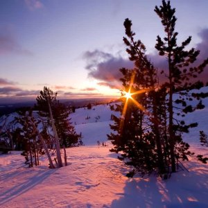 Sunburst over Timberline