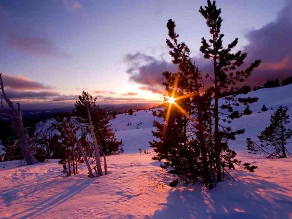 Sunburst over Timberline