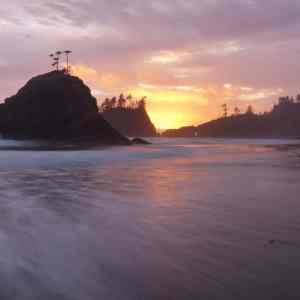 The Olympic Coast